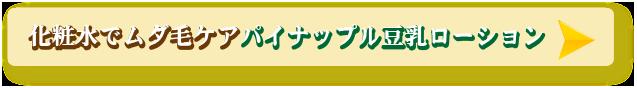 パイナップル豆乳ローション公式サイトへ